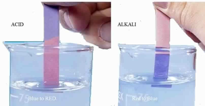 Độ pH là gì